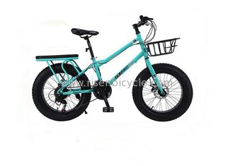 China Cheap Snow Beach Bike 20 inch Fat Tire Snow Bicycle supplier
